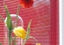 raamdecoratie_facette_4.jpg-nggid03100-ngg0dyn-262x178x100-00f0w010c011r110f110r010t010