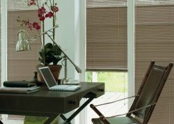 raamdecoratie_jaloezieen_4.jpg-nggid0252-ngg0dyn-262x178x100-00f0w010c011r110f110r010t010